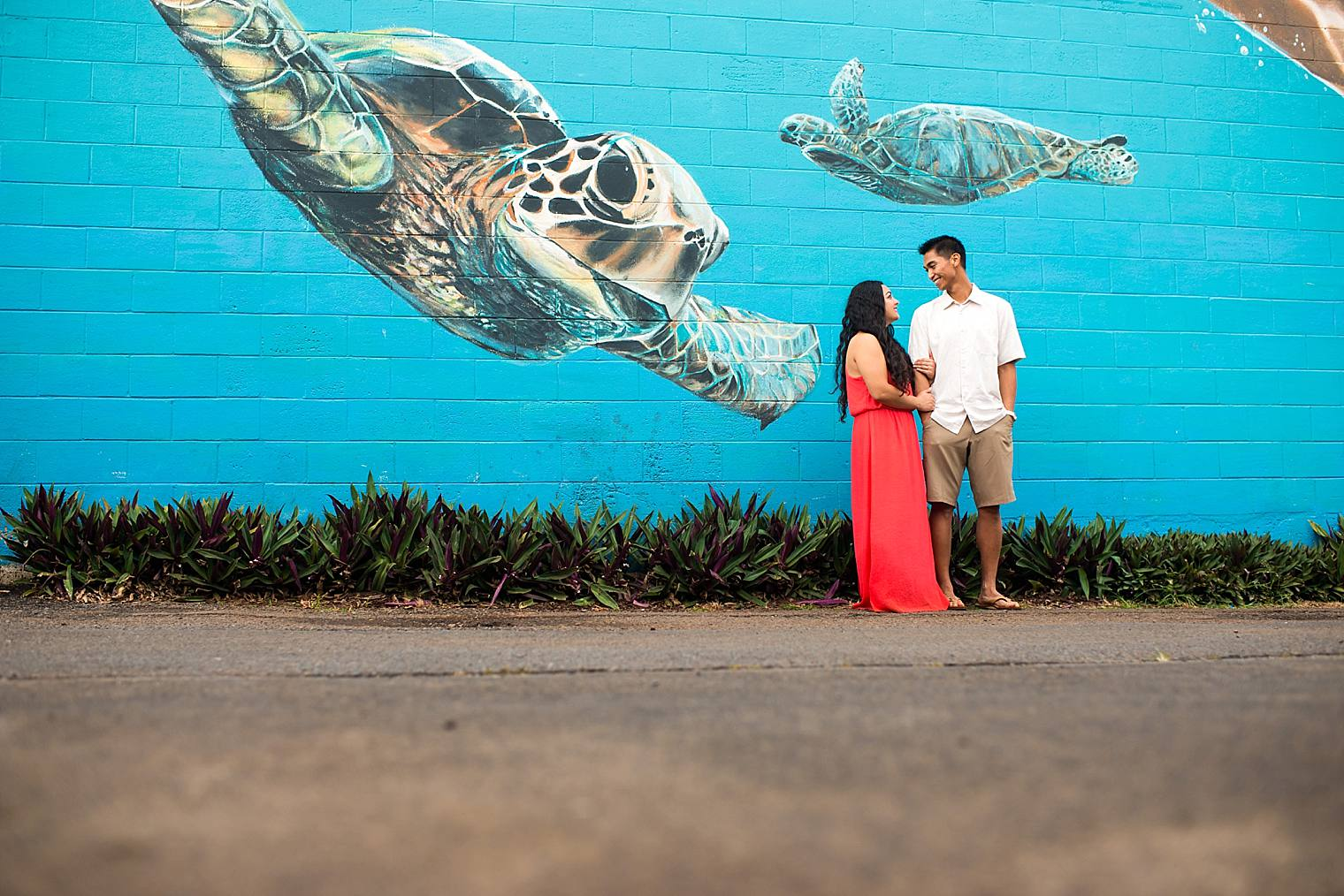 engagement photos with turtles