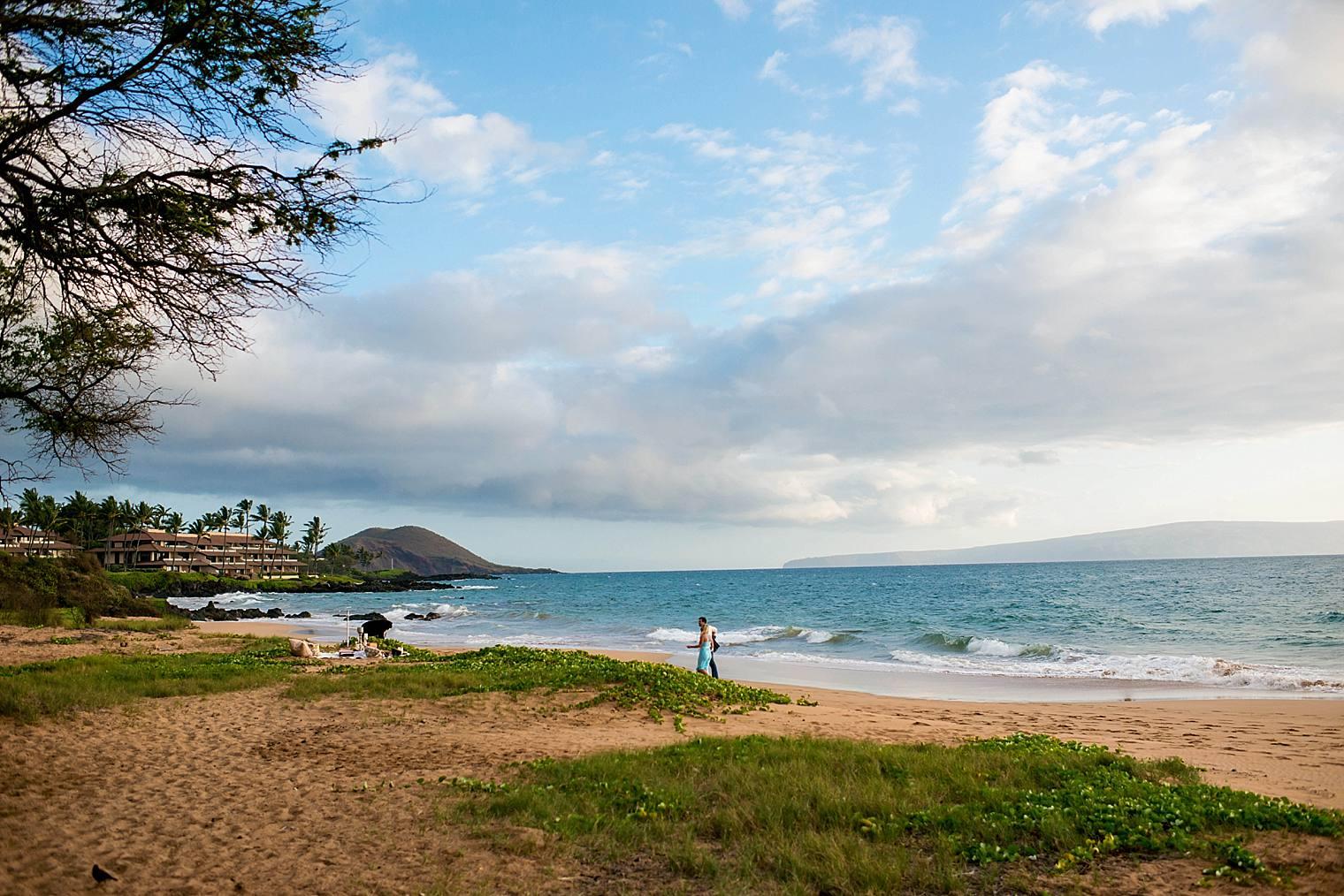Surprise Picnic Proposal in Maui_0006