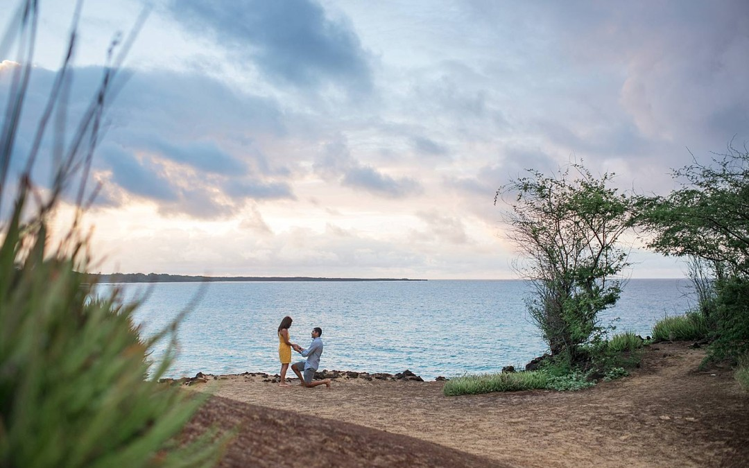 Hetal + Sikta | Maui Proposal Photographer