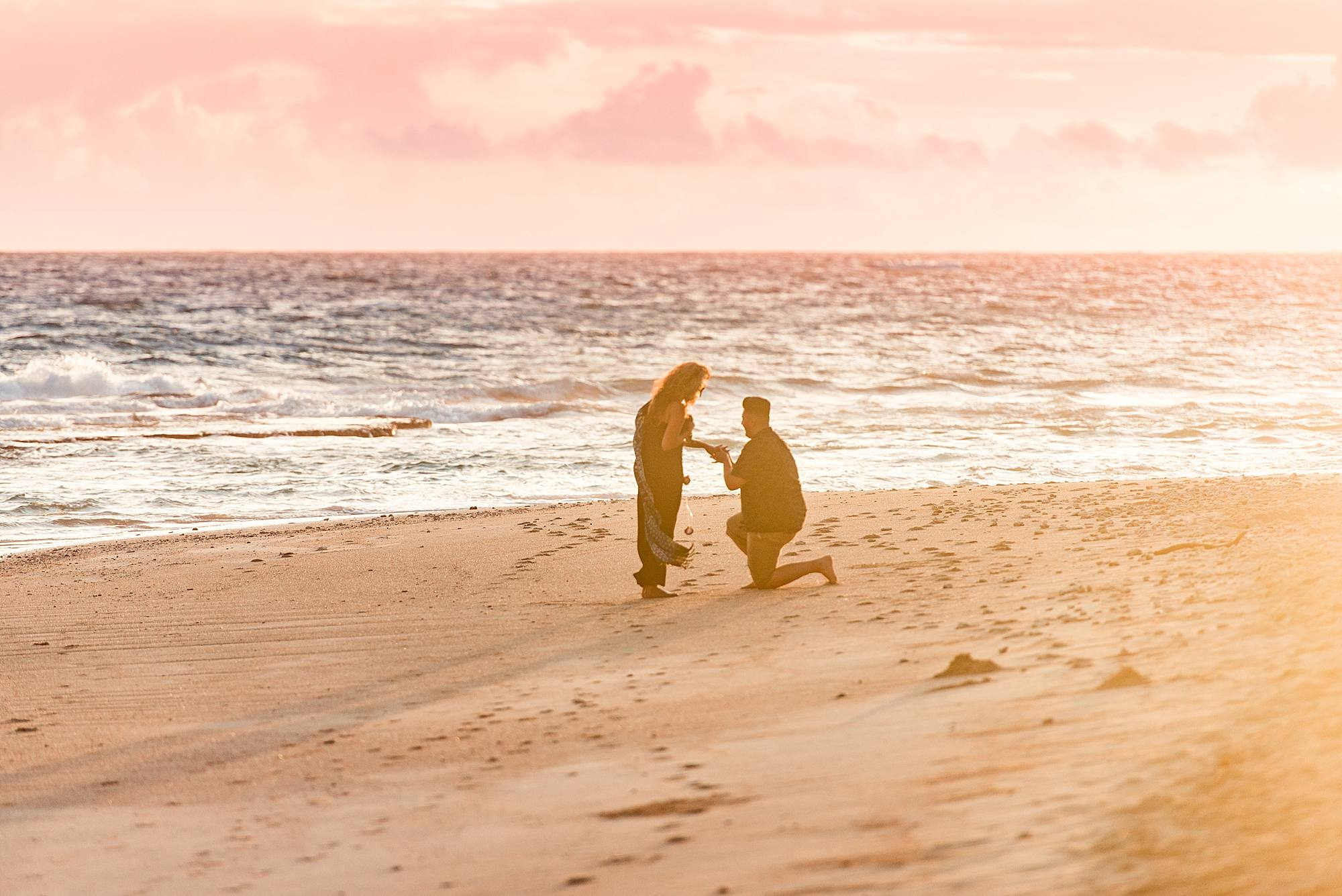 North Shore Sunrise Proposal with Shells_0010