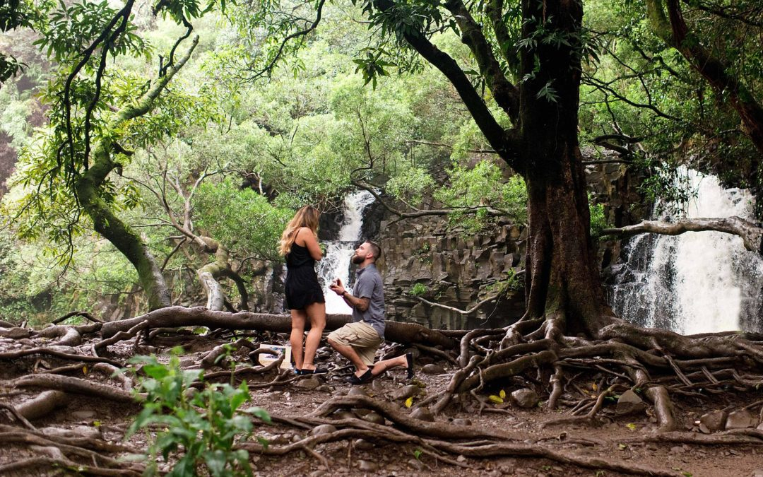 Surprise Waterfall Proposal in Maui | Anthony + Maricela