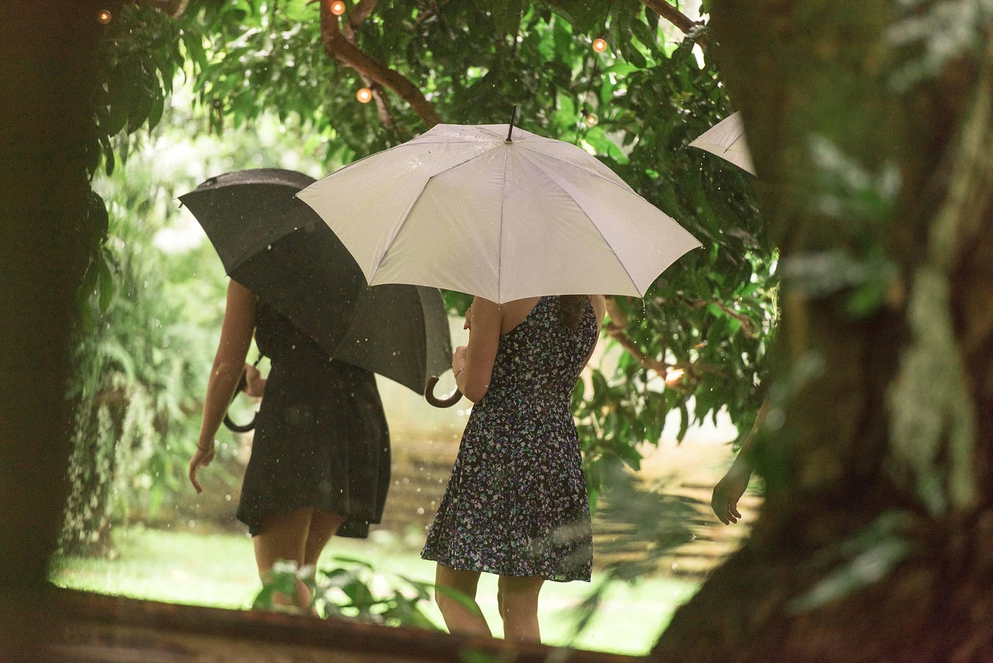 two women holding umbrellas walking away from camera, one white umbrella one black umbrella