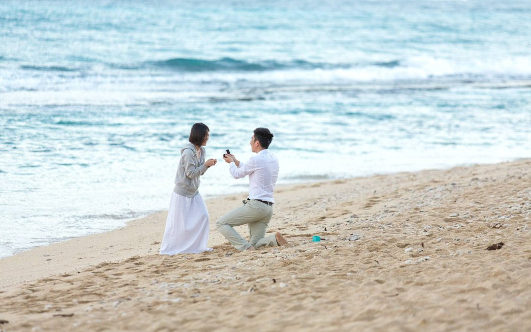 Sunrise Proposal on the North Shore | Qin + Yun