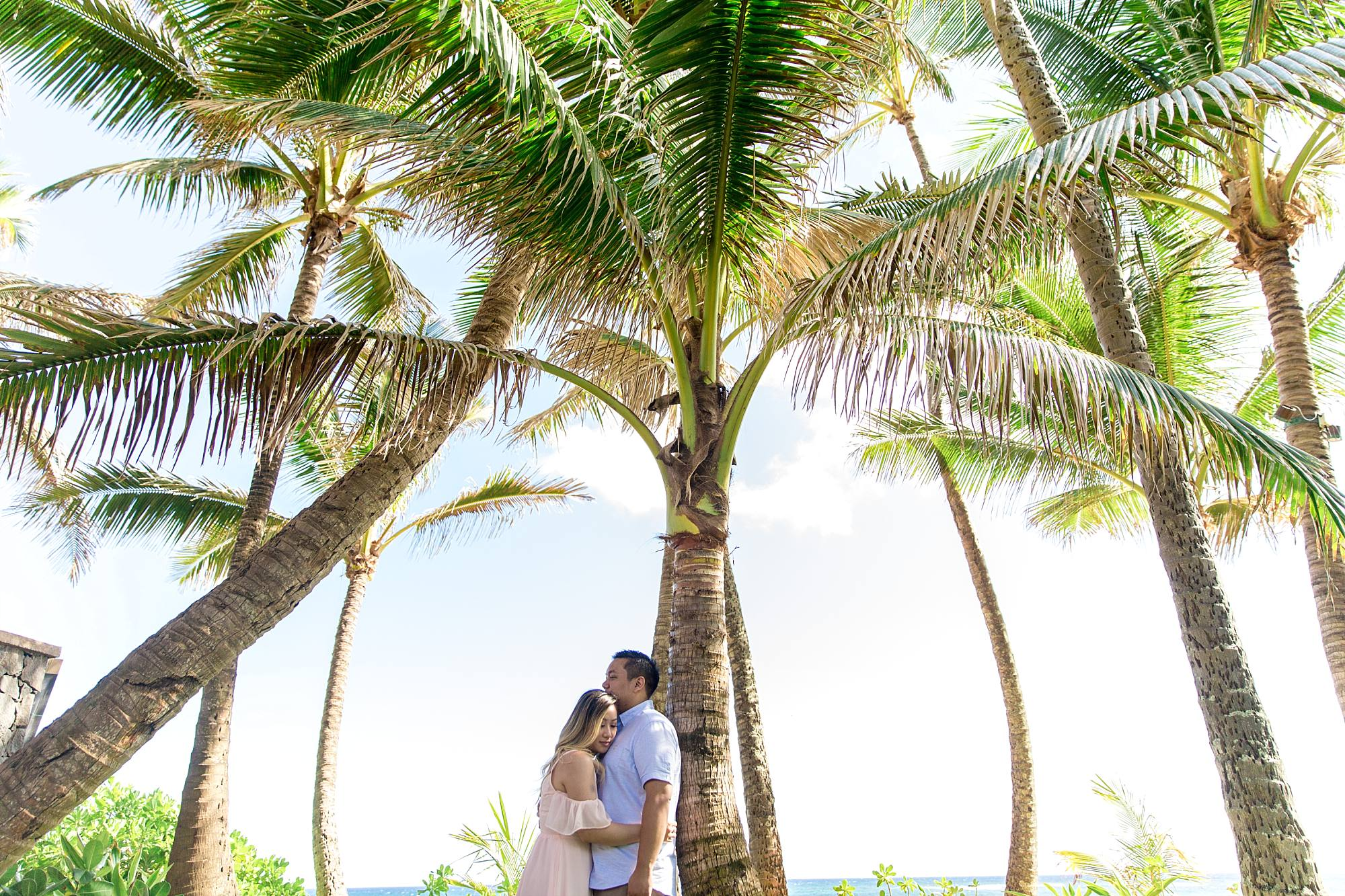 engaged couple hugging leaning against a palm tree