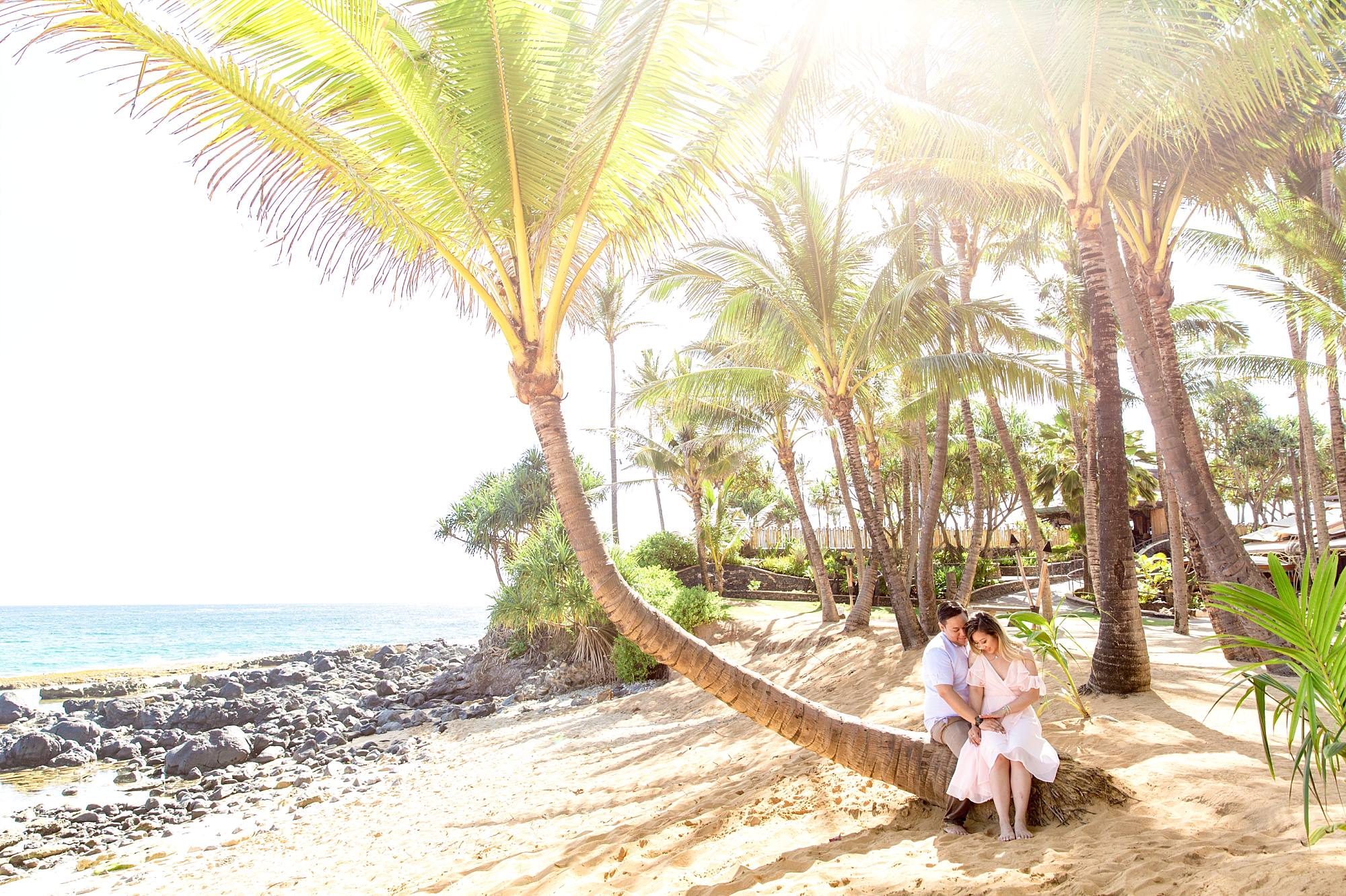 incredible light pouring through a sideways palm tree that a couple is sitting on