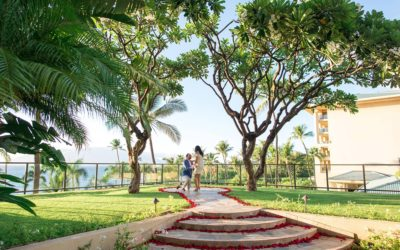 Maui Birthday Proposal at Plumeria Point | Siavash + Faraneh