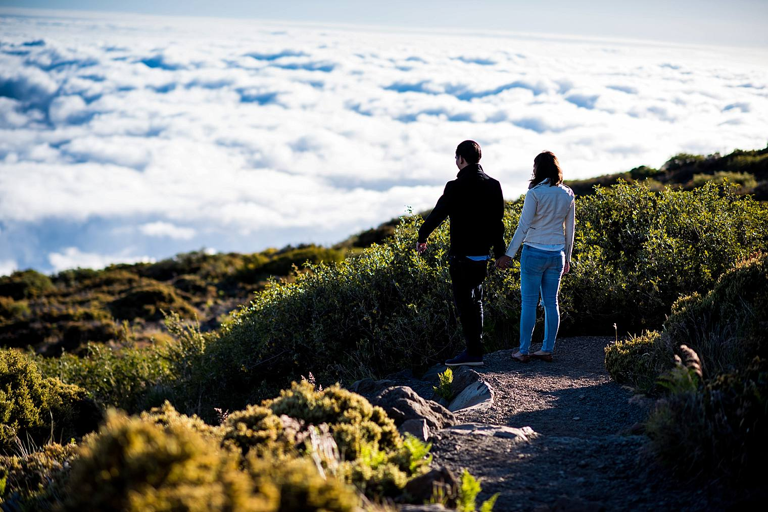 Engaged on a volcano in maui above the clouds
