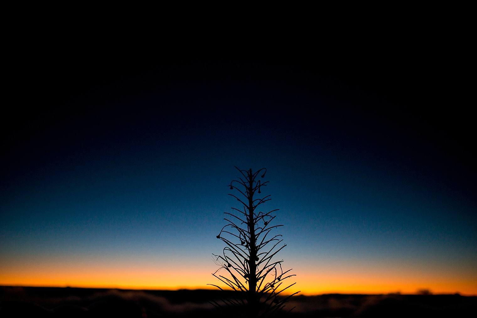 sun rising on Haleakala