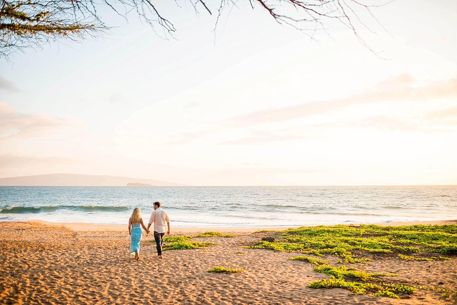 Surprise Picnic Proposal in Maui_0020