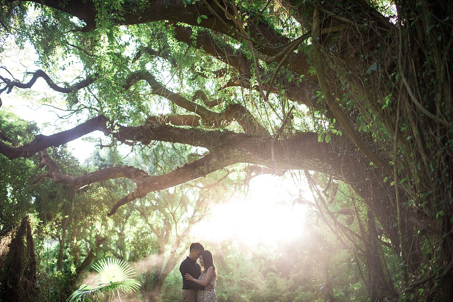 Best Places to Propose in Maui - Maui Engagement Photographer-31