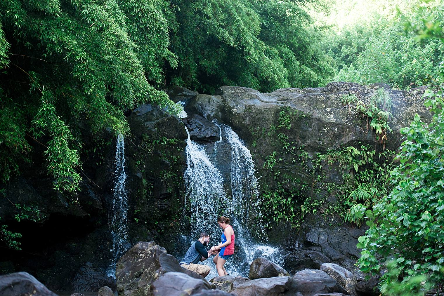Maui Waterfall Proposal_0008
