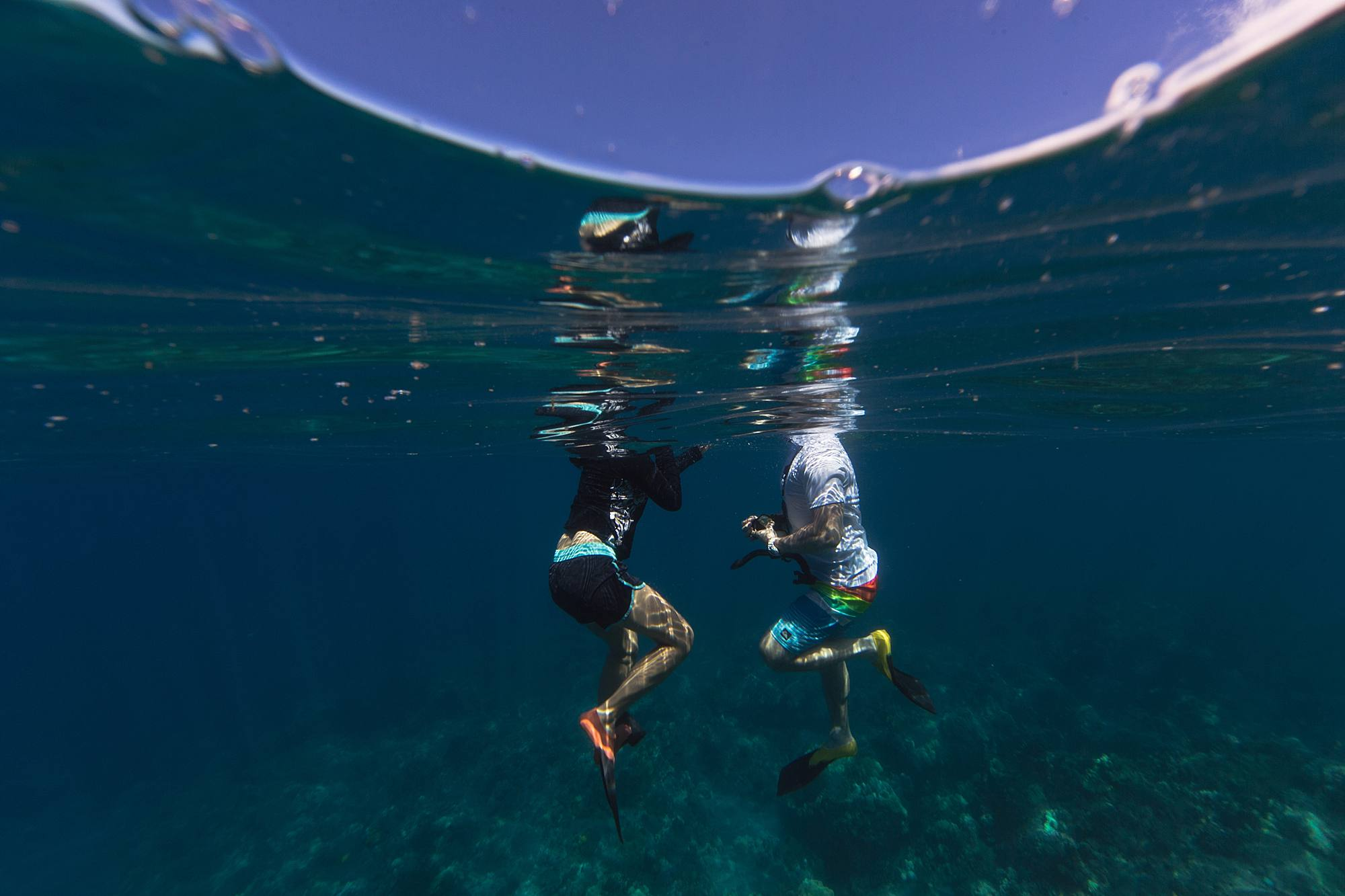 snorkeling proposal