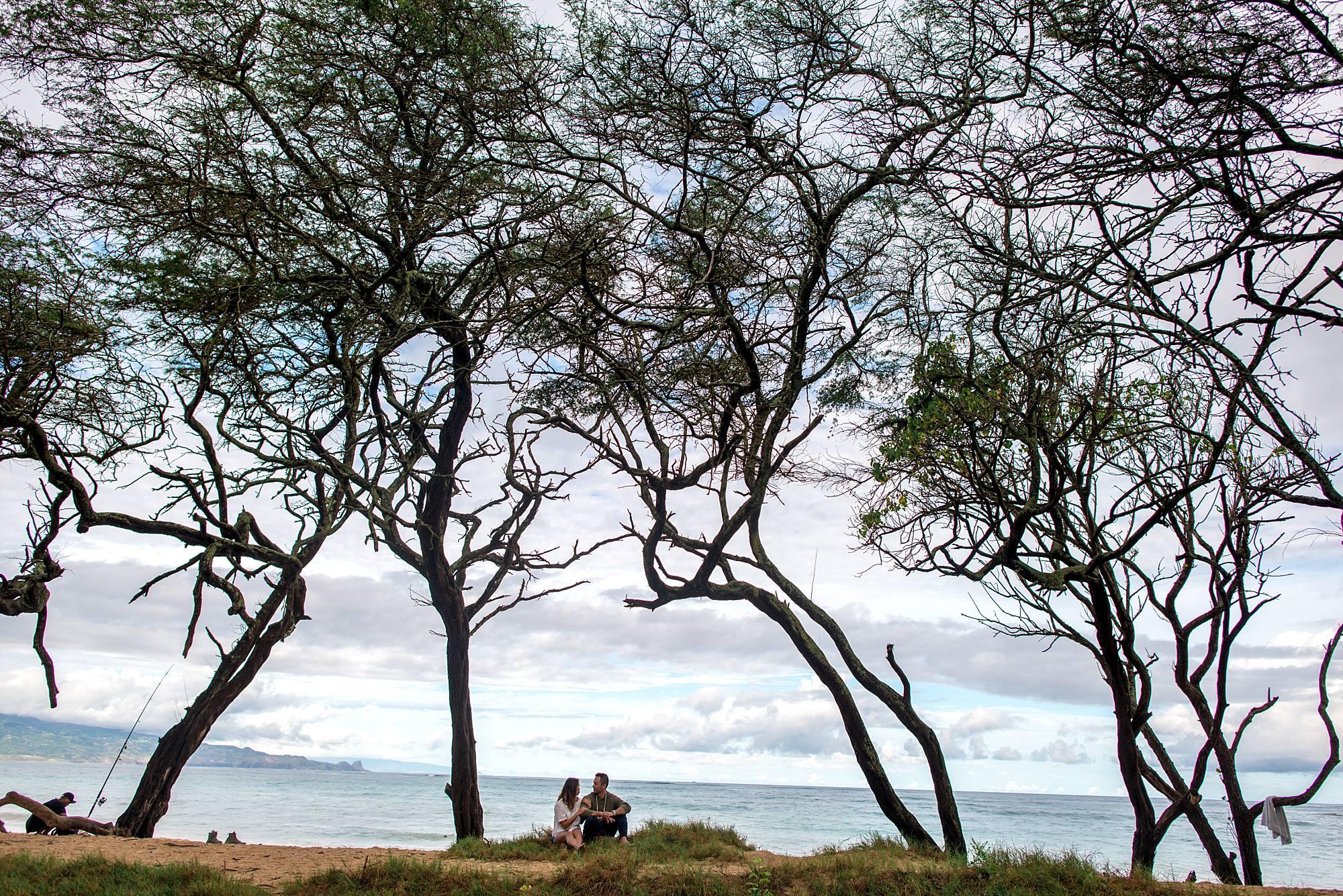 couple sitting under trees on Maui beach