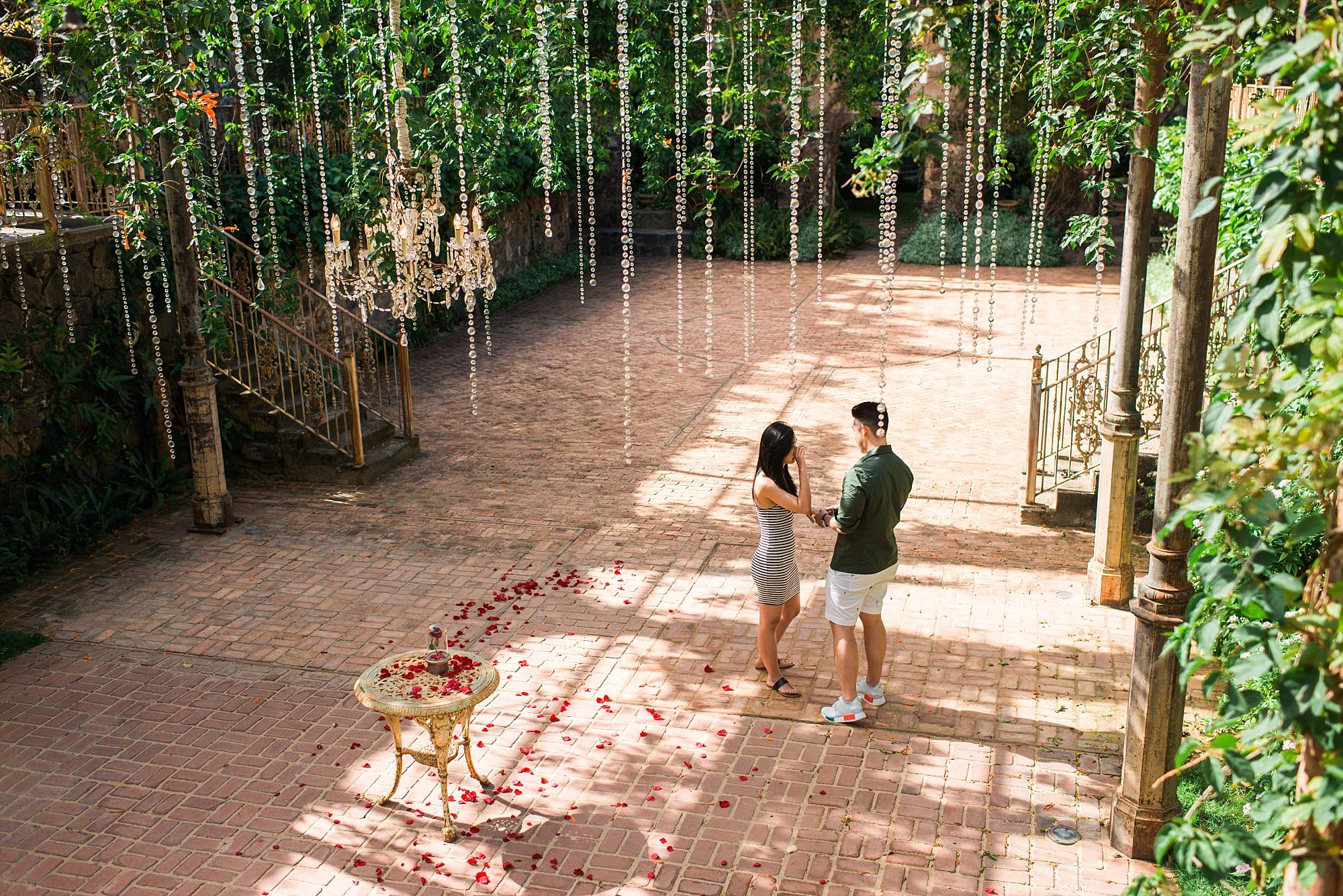 Couple holding hands, just engaged, near the site of their engagement with roses lining a path for them to the table with the ring on it