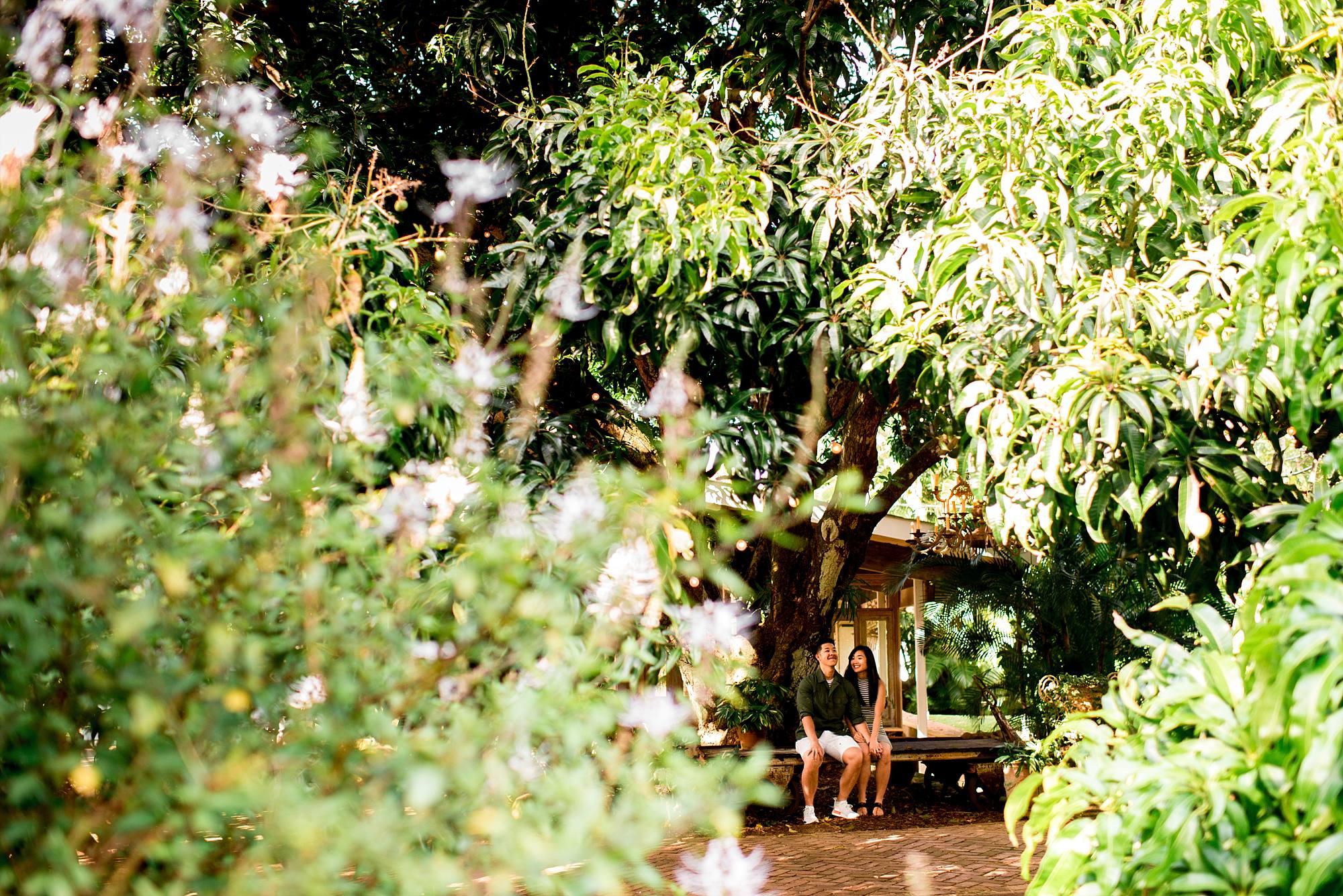 engaged couple sitting on a bench at Haiku Mill
