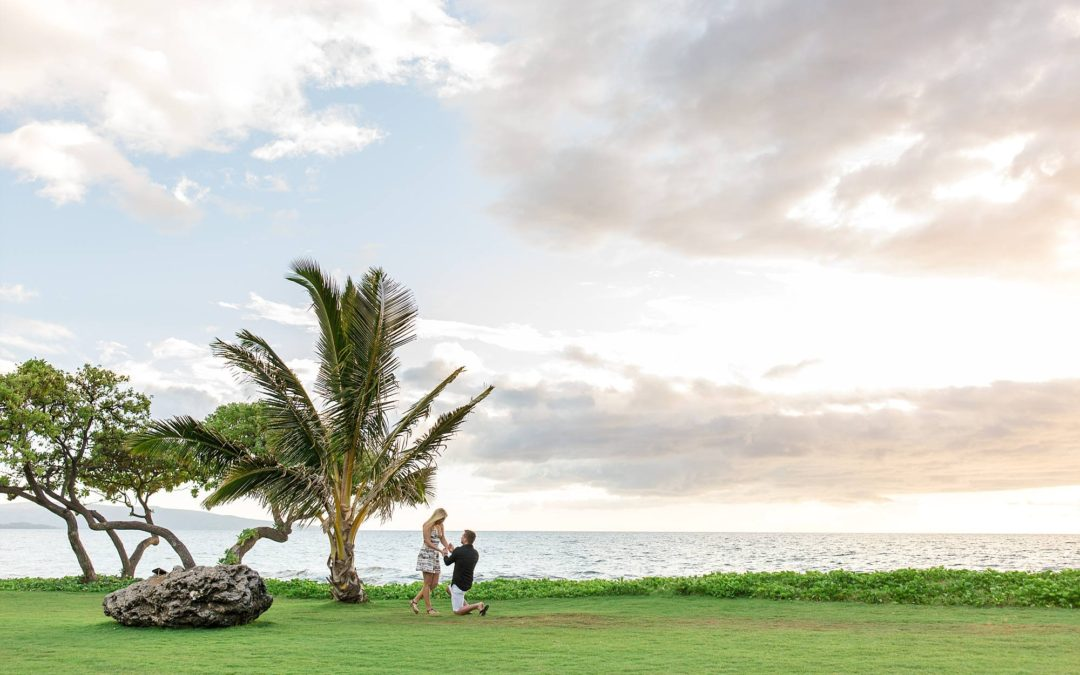 Spontaneous South Maui Proposal | Matt + Julene