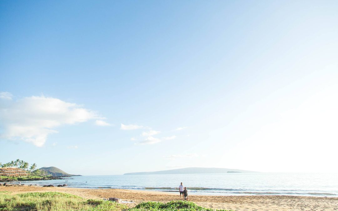 Same Sex Picnic Proposal on Maui | Colten + Braydon