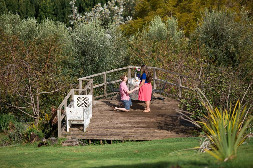 proposal at Ali'i Kula lavender farm