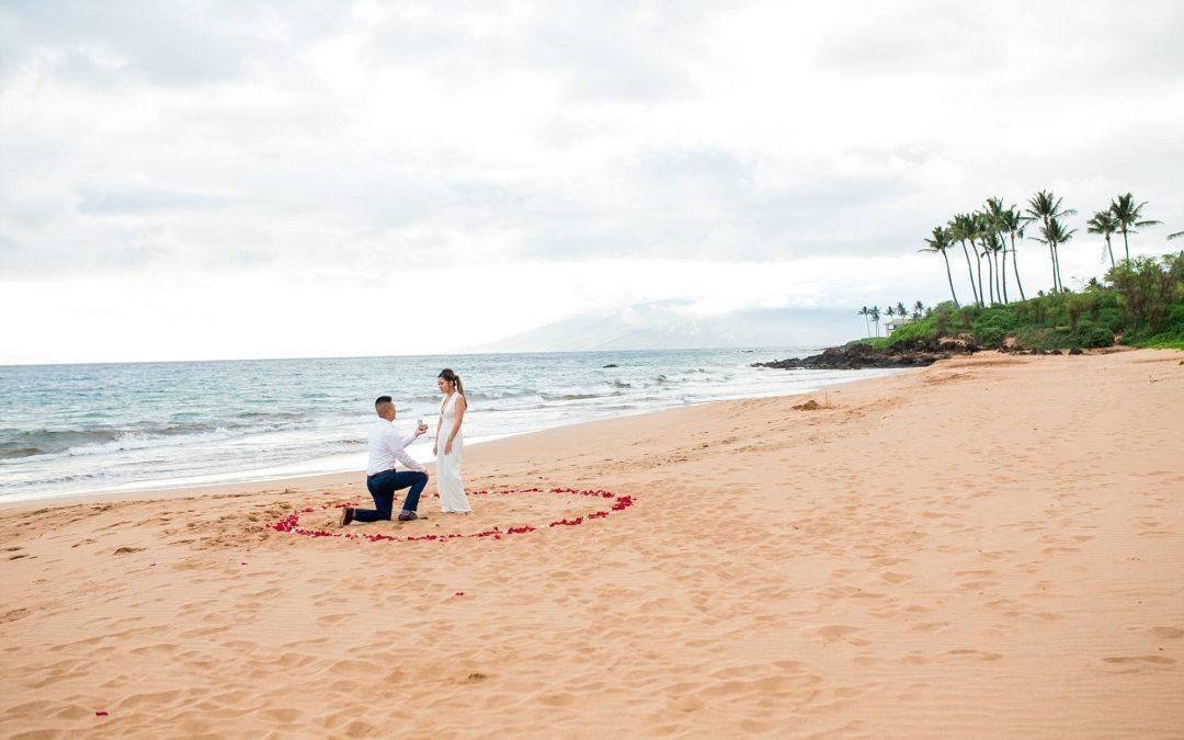Planned Photo Shoot Turned Surprise Proposal   Joe + Christine