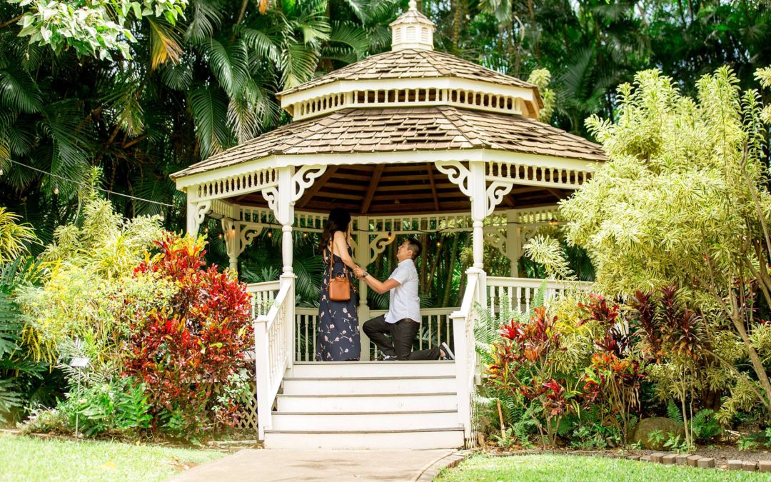 Gazebo Proposal on Maui | Victor + Mariah