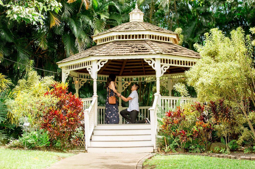 Maui gazebo proposal