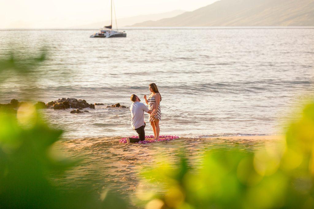 Maui beach proposal in flower circle