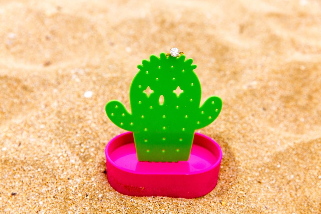 Cactus engagement ring holder