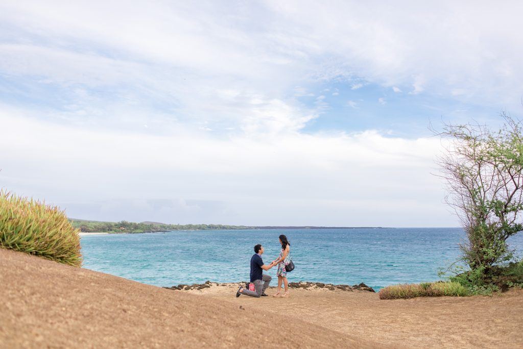Cliffside proposal on Maui