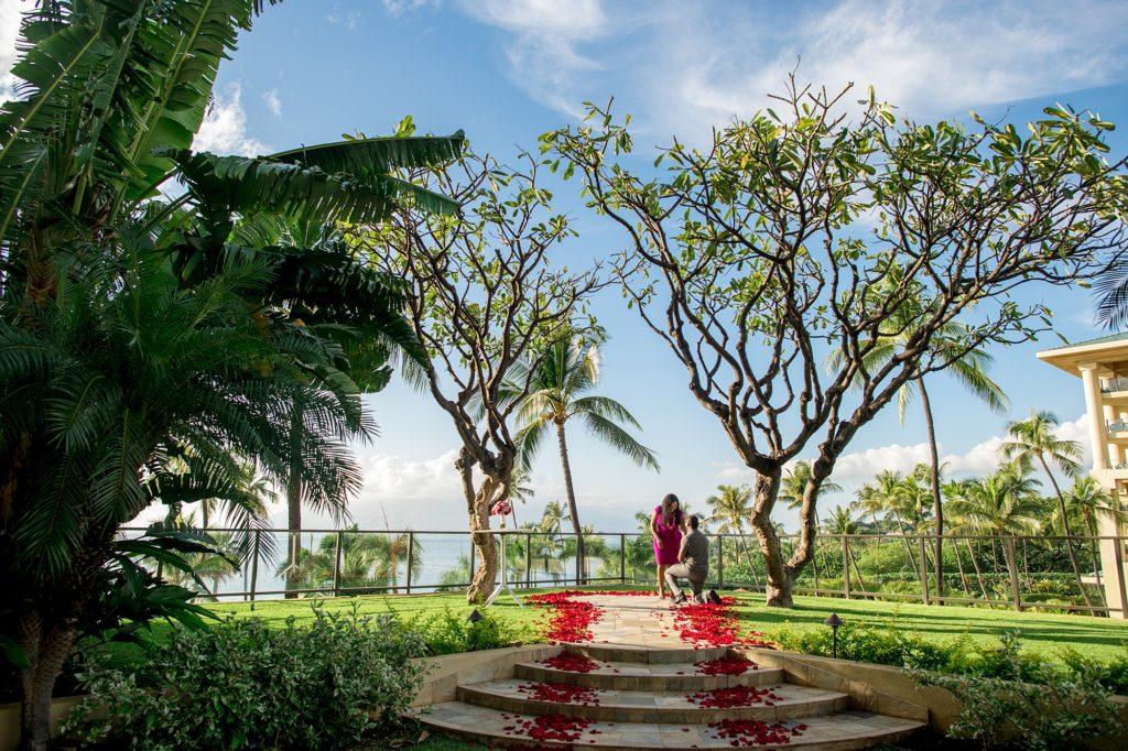 Proposal at Four Seasons Resort Maui at Wailea - Plumeria Point