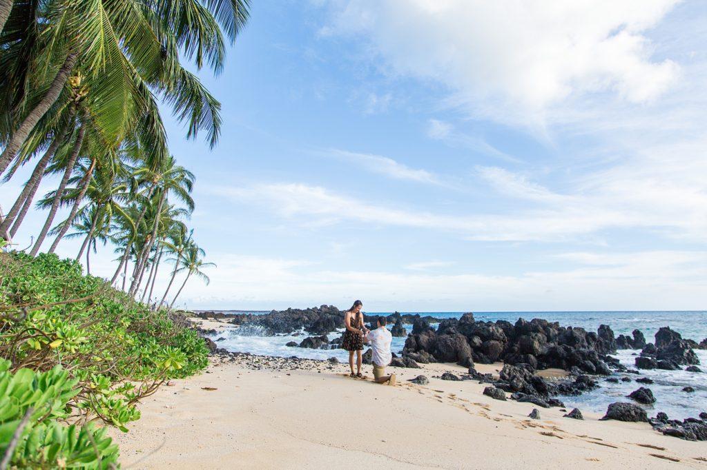 Proposal on the leeward side of Maui