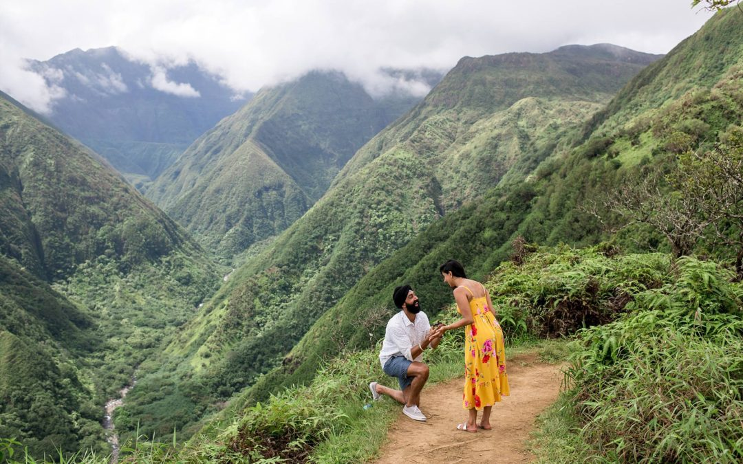 Waihee Ridge Proposal | Aman +Meeta