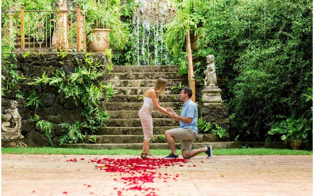 Romantic Haiku Mill Proposal | Tyler + Emily