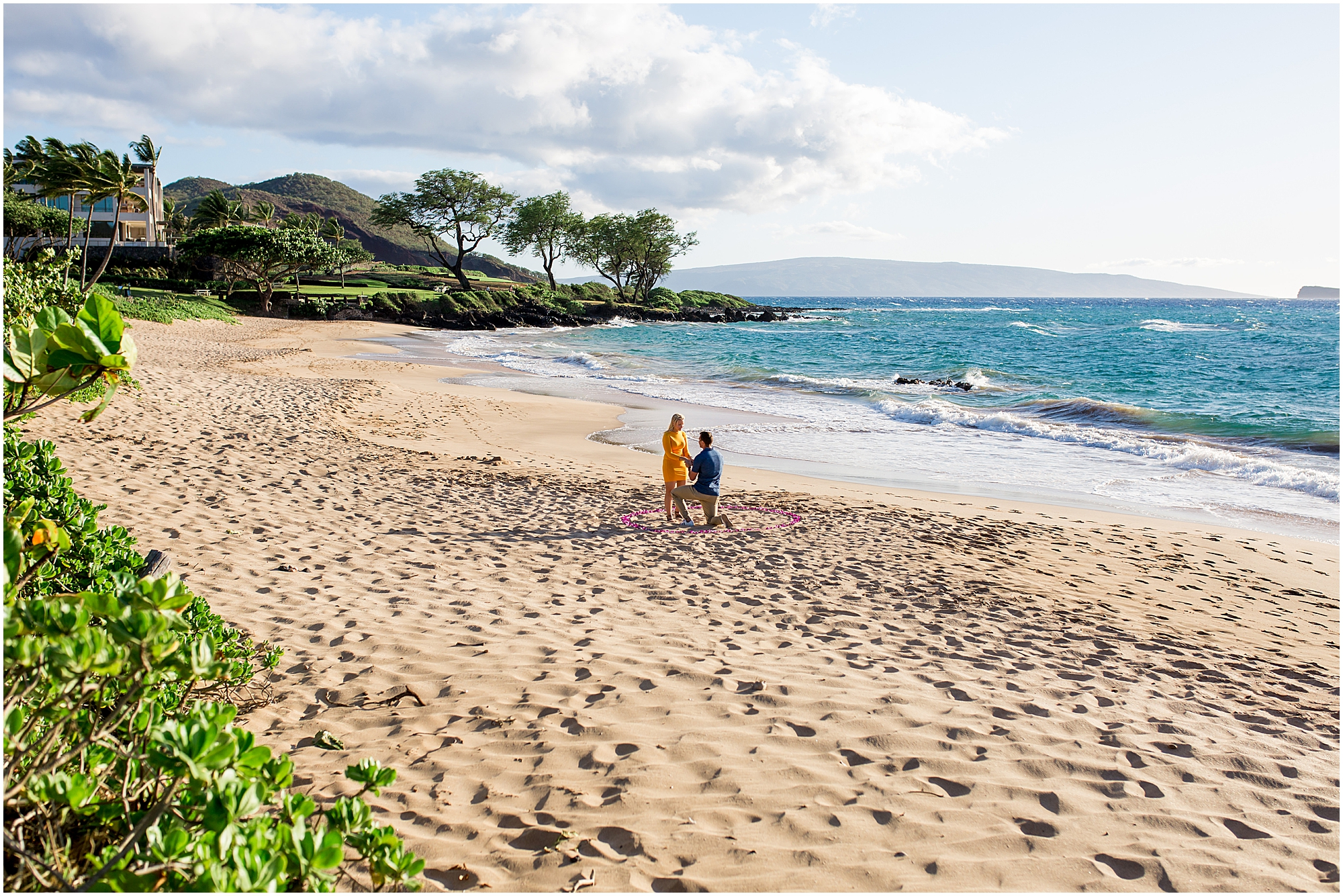 Maui beach proposal