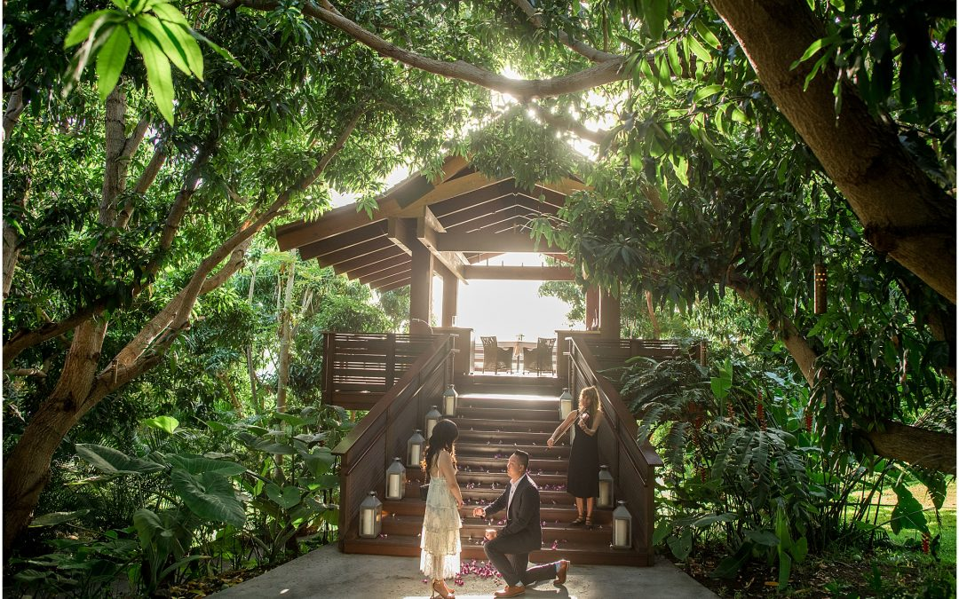 Private Treehouse proposal in Maui at Hotel Wailea