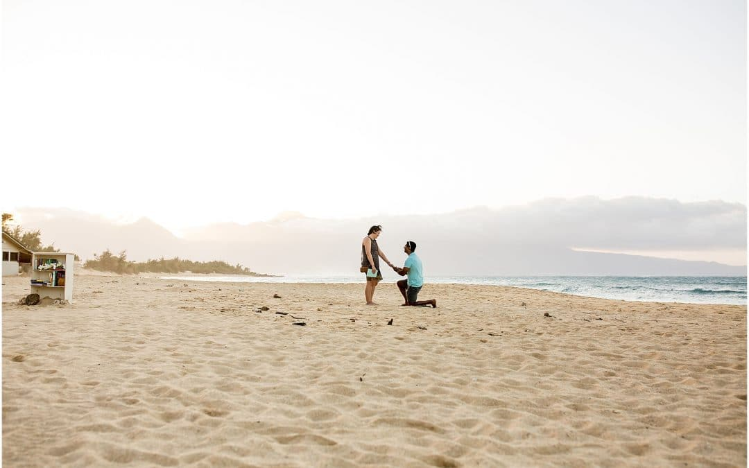 Engaged on Maui set up a fake beach library for this proposal.
