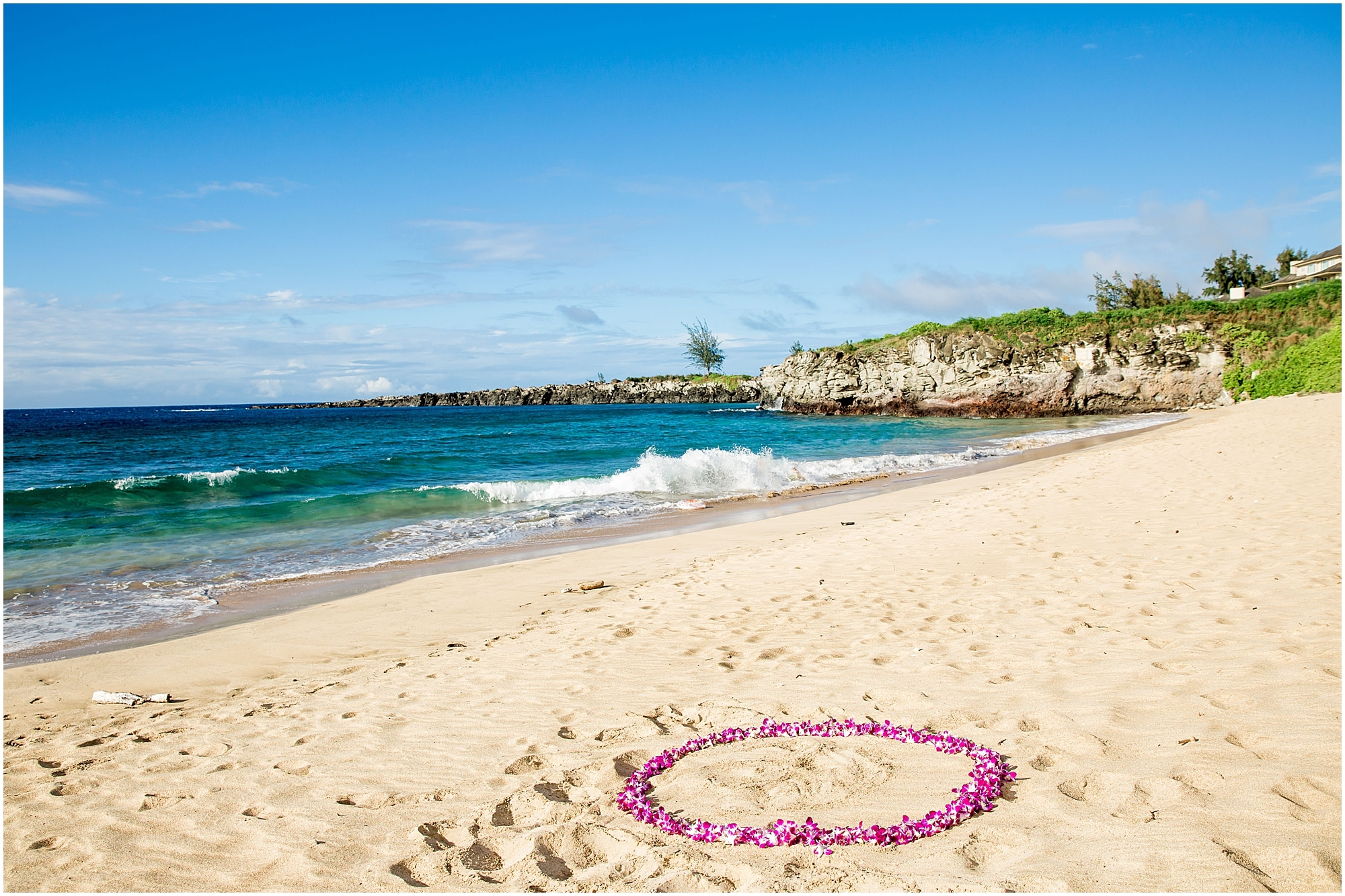 Purple orchid flower circle on the beach